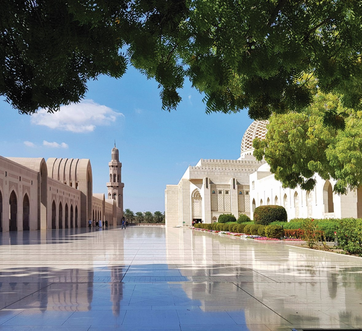 Must Go - Business in Muscat